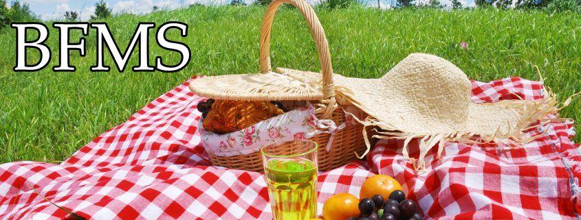 BFMS picnic